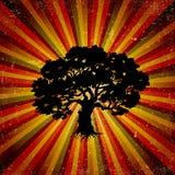 Grunge retro background with tree. Vector. Illustration Royalty Free Stock Image