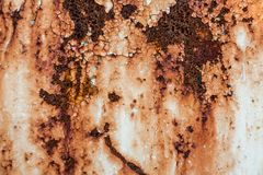 Grunge retro rusty metal texture or background Stock Photography