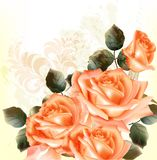 Grunge romantic background with roses. Vector cute pink roses in vintage style for design Stock Images