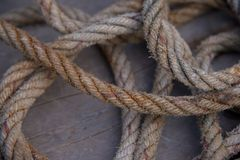 The grunge rope on wooden board. Royalty Free Stock Image