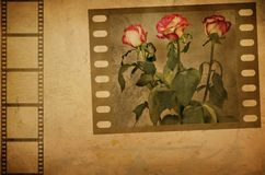 Grunge rose Stock Photography