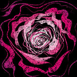 Grunge rose Illustration Stock Photography