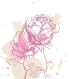 Grunge roses Stock Photo
