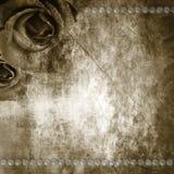 Grunge Roses Background Stock Photo