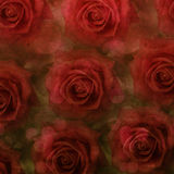 Grunge roses background Royalty Free Stock Photos