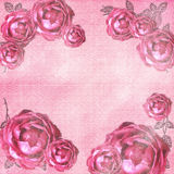 Grunge roses background Royalty Free Stock Images