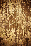 Grunge rotting wood. Grunge colored rotting  wood with  with peeled paint Royalty Free Stock Photos