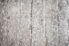 Grunge Rural Wooden Surface With Stains And Fungus Royalty Free Stock Image