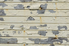 Grunge rustic wooden wall Stock Images