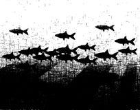 grunge rybcia Obraz Stock