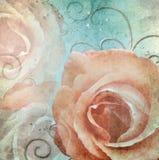 Grunge shabby Roses Background Stock Photos