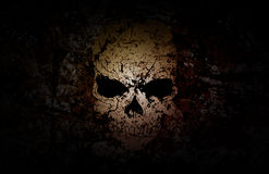 Grunge Skull Dark Background Stock Photography