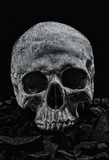 Grunge skulls Royalty Free Stock Photo