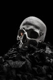Grunge skulls Stock Image