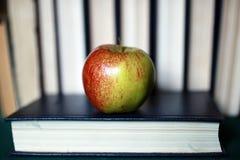 Grunge skutka fotografii edukaci książkowej sterty jabłczany pióro Obraz Stock