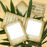 Grunge slides on background with bamboo leaves.  Royalty Free Stock Images