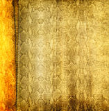 Grunge snakeskin background Stock Photos