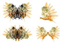 Grunge spider butterfly and grunge women Stock Photo