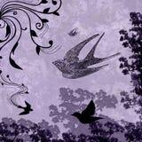 Grunge Splatter Love Doves Royalty Free Stock Image