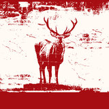 Grunge Stag Royalty Free Stock Image
