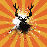 Grunge Stag Royalty Free Stock Images