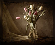 Grunge still-life with tulips Royalty Free Stock Photo