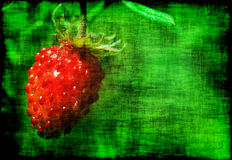 Grunge strawberry Royalty Free Stock Photo