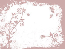 Grunge style - floral. Vector illustration of floral elements on a grunge background Royalty Free Stock Image