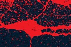 Grunge Halloween background with blood splats Stock Photos