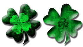 Grunge Style Shamrocks Isolated Royalty Free Stock Image
