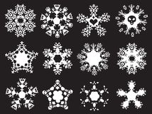 Grunge styled snowflakes. Set of 12 snowflakes on a black background Stock Image