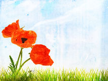 Grunge summer background with bright poppy flowers Royalty Free Stock Photos