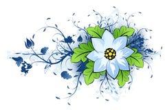 Grunge summer flower Stock Photography