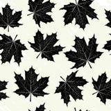 Grunge tło z czarnymi liśćmi Obraz Royalty Free