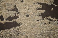 Grunge texturbakgrund Lantligt konkret texturfoto för bakgrund Arkivfoto