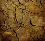 Grunge texture. Grunge dirty and crack background Stock Image