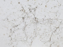 Grunge texture. stock photography