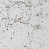 Grunge texture. Stock Photos