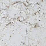 Grunge texture. Stock Photos