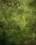 Grunge Texture Background. Grungy style digital backdrop for chroma key portraiture Stock Image