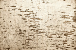 Grunge texture background. Vintage beige wooden background with space for text. Close up of old painted surface Stock Photos