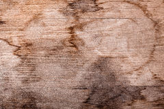 Grunge texture of dirty in spots wood Board Royalty Free Stock Photo