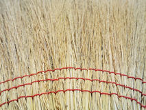 Grunge texture of dry grass Stock Photo