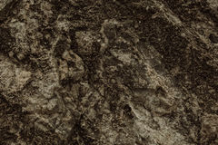 Grunge texture Stock Image