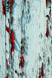 Grunge texture of peeling paint on the shutters.  Stock Photo