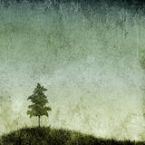 Grunge Texture with Single Tree. A single tree on a grassy hill with grunge background Royalty Free Stock Image