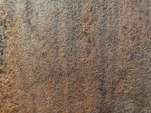 Grunge texture of wood royalty free stock photography