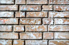 Grunge textured background of brick wall Stock Images