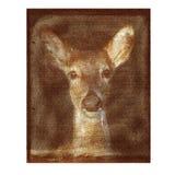 Grunge Textured ciervos Imágenes de archivo libres de regalías