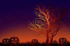 Grunge textured Halloween night background Stock Photo